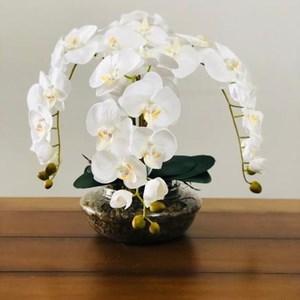 Arranjo com 4 orquídeas ranças em vaso de vidro