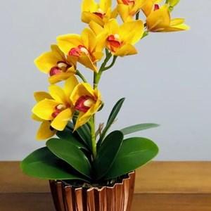 Arranjo de Orquídea Cymbidium amarela em vaso Gold Rosê